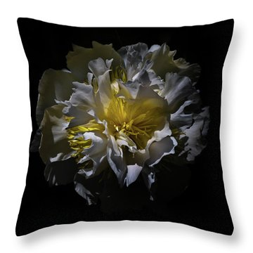 Throw Pillow featuring the photograph Backyard Flowers 25 Color Version by Brian Carson