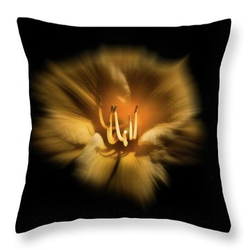 Throw Pillow featuring the photograph Backyard Flowers 26 Color Flow Version by Brian Carson