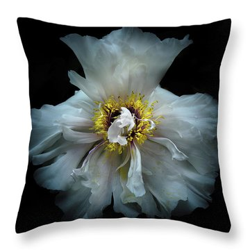 Throw Pillow featuring the photograph Backyard Flowers 49 Color Version by Brian Carson