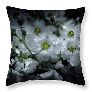 Throw Pillow featuring the photograph Backyard Flowers 51 Color Version by Brian Carson