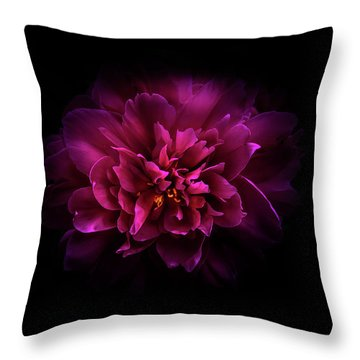 Backyard Flowers 55 Color Version Throw Pillow