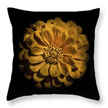Throw Pillow featuring the photograph Backyard Flowers 58 Color Version by Brian Carson