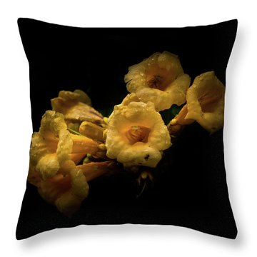 Backyard Flowers 63 Color Version Throw Pillow