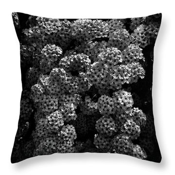 Throw Pillow featuring the photograph Backyard Flowers In Black And White 21 by Brian Carson