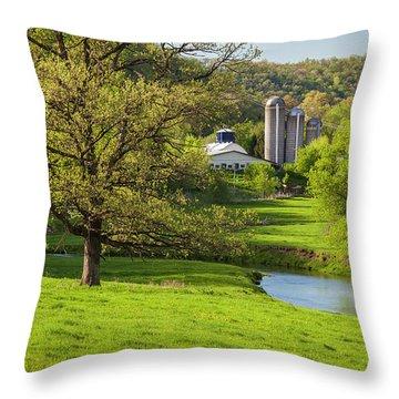 Bad Axe River Throw Pillow