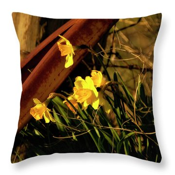 Throw Pillow featuring the photograph Bad Situation by Albert Seger