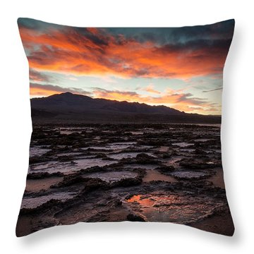 Bad Water Throw Pillow