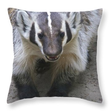 Badgered Badger Throw Pillow