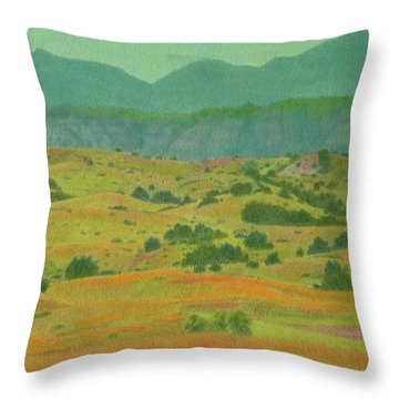 Badlands Grandeur Throw Pillow