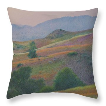 Badlands In July Throw Pillow