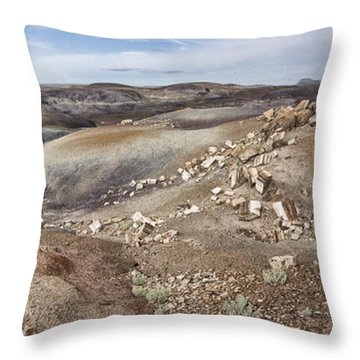 Badlands In Petrified Forest Throw Pillow