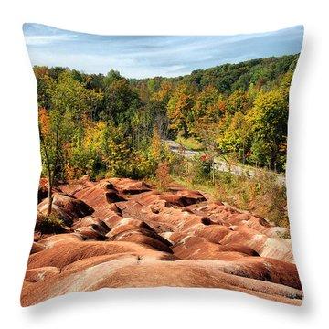 Badlands Throw Pillow by Joe  Ng