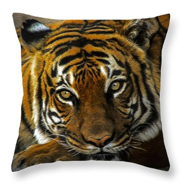 Throw Pillow featuring the mixed media Baheem Bored by Elaine Malott
