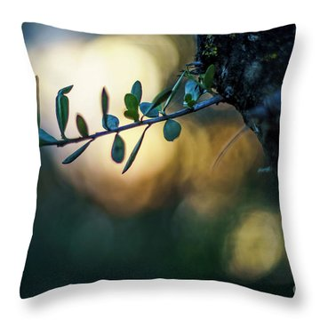 Bahia De Cadiz Natural Park Puerto Real Spain Throw Pillow