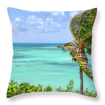 Bahia Honda State Park Atlantic View Throw Pillow