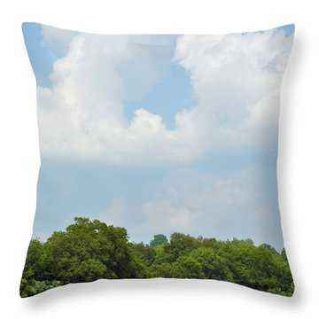 Bailing Throw Pillow by Jan Amiss Photography