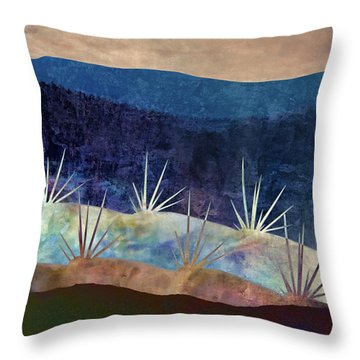 Baja Landscape Number 2 Throw Pillow