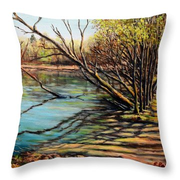 Bakers Pond Ipswich Ma Throw Pillow by Eileen Patten Oliver