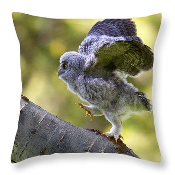 Balance Throw Pillow by Aaron Whittemore