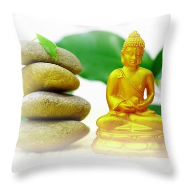 Balance Throw Pillow by Tanja Riedel
