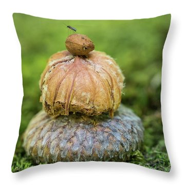 Throw Pillow featuring the photograph Balance With Nature by Dale Kincaid