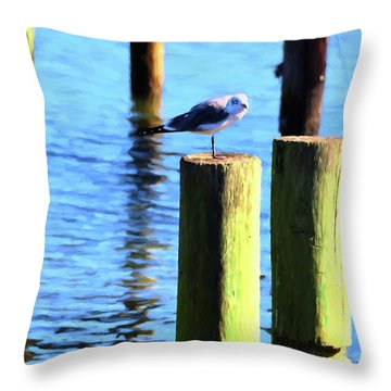 Throw Pillow featuring the photograph Balanced by Jan Amiss Photography