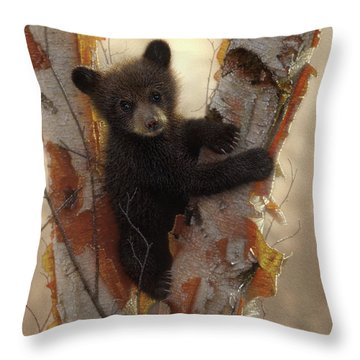 Black Bear Cub - Curious Cub Throw Pillow