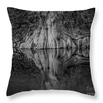 Bald Cypress Reflection In Black And White Throw Pillow