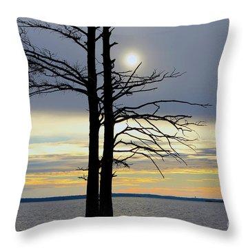 Bald Cypress Silhouette Throw Pillow