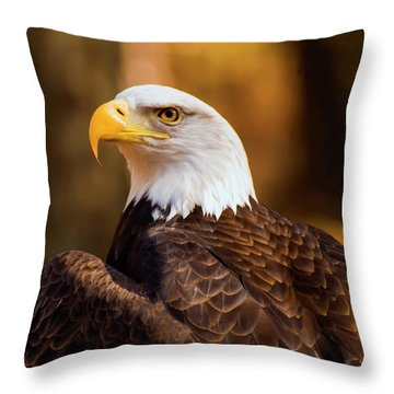 Bald Eagle 2 Throw Pillow