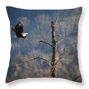 Bald Eagle At Boxley Mill Pond Throw Pillow