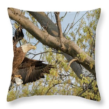 Bald Eagle Catch Of The Day  Throw Pillow