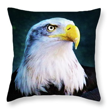 Bald Eagle Close Up Throw Pillow