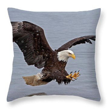 Bald Eagle Diving For Fish In Falling Snow Throw Pillow