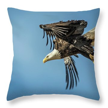 Bald Eagle Flight 1 Throw Pillow
