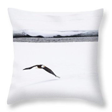 Bald Eagle Fly By Throw Pillow