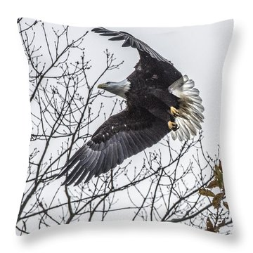 Bald Eagle Flying Throw Pillow
