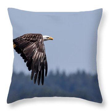 Bald Eagle Hunting Prey Throw Pillow