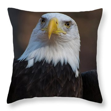 Bald Eagle Looking Right Throw Pillow