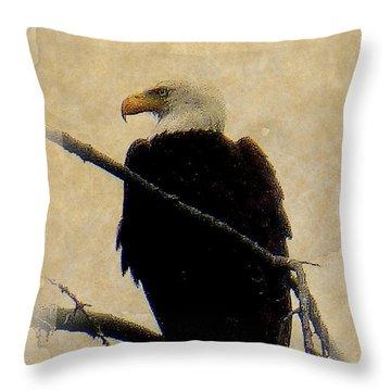 Throw Pillow featuring the photograph Bald Eagle by Lori Seaman