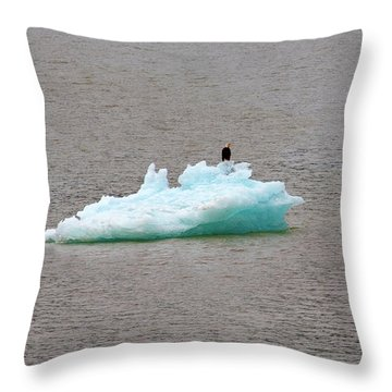 Bald Eagle On Blue Glacial Ice Throw Pillow