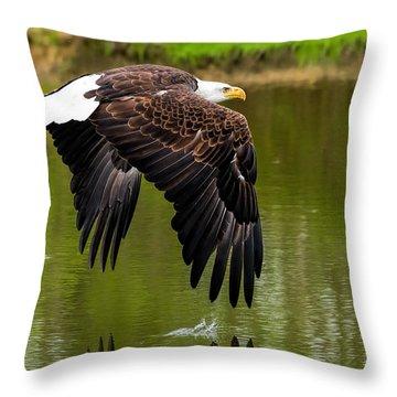 Bald Eagle Over A Pond Throw Pillow