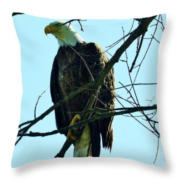 Bald Eagle Over The Root River Throw Pillow