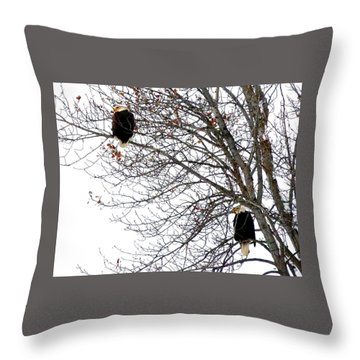 Throw Pillow featuring the photograph Bald Eagle Pair by Will Borden