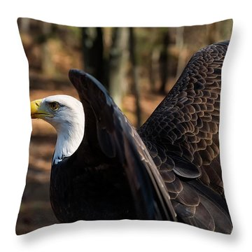 Bald Eagle Preparing For Flight Throw Pillow