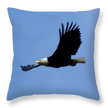 Throw Pillow featuring the photograph Bald Eagle Soaring High by Ben Upham III