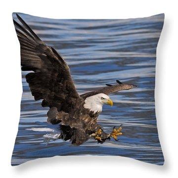 Bald Eagle Strike Throw Pillow