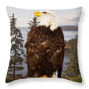 Bald Eagle Vancouver Throw Pillow by Peter J Sucy