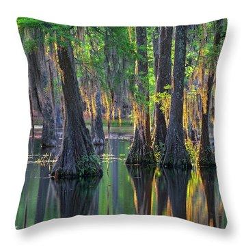 Baldcypress Trees, Louisiana Throw Pillow