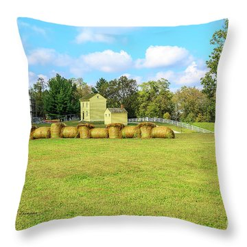 Throw Pillow featuring the photograph Baled Hay In A Grassy Field by Richard J Thompson